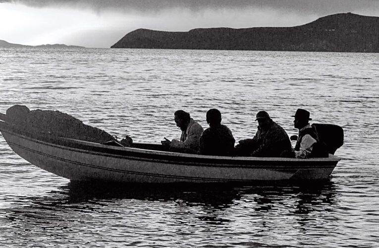 [34° Mar del Plata Film Fest] Crítica 'Sirena'