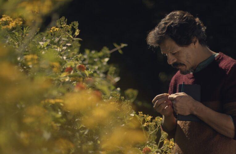 [33° Mar del Plata Film Fest] Crítica 'Sobre cosas que me han pasado'